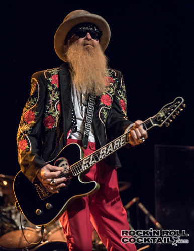 Billy Gibbons Photographed by Jason Miller-18