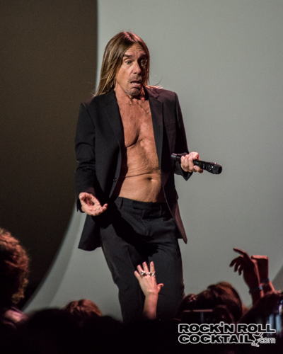 Iggy Pop photographed by Jason Miller-10