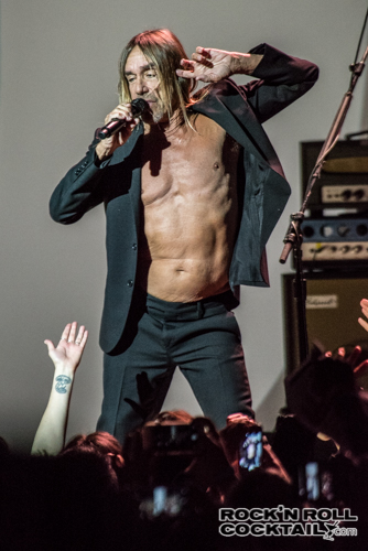 Iggy Pop photographed by Jason Miller-12