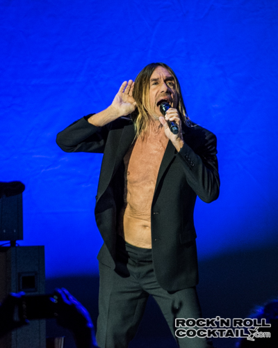 Iggy Pop photographed by Jason Miller-24