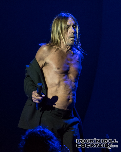Iggy Pop photographed by Jason Miller-26