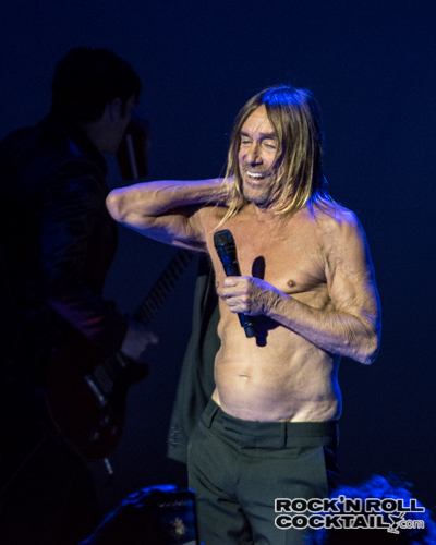 Iggy Pop photographed by Jason Miller-27