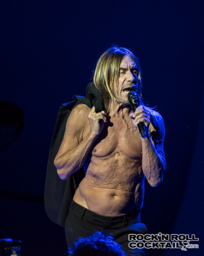 Iggy Pop photographed by Jason Miller-28