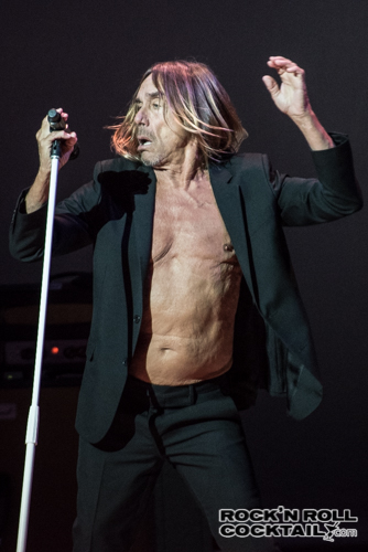 Iggy Pop photographed by Jason Miller-3