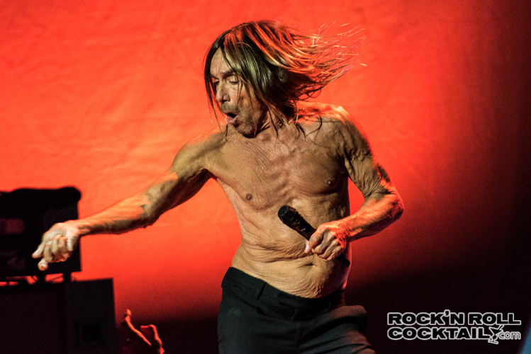 Iggy Pop photographed by Jason Miller-32