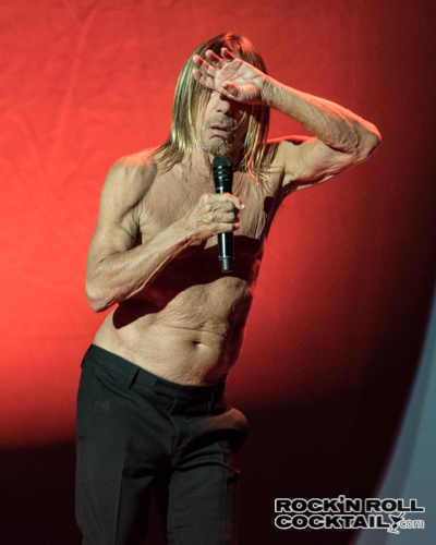 Iggy Pop photographed by Jason Miller-33