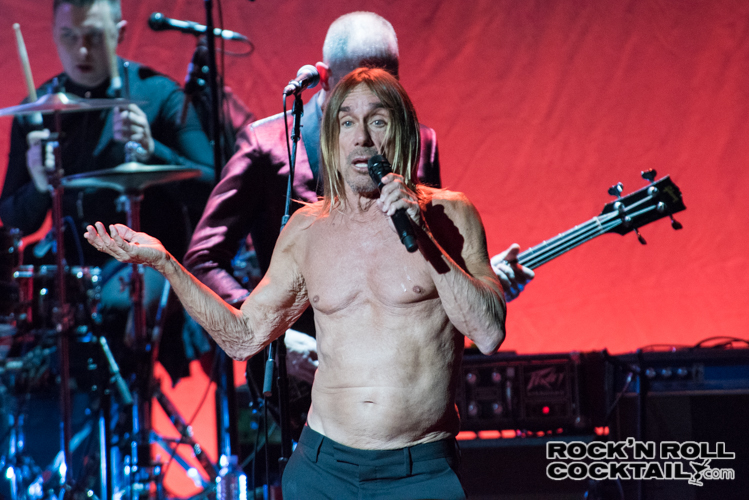 Iggy Pop photographed by Jason Miller-45