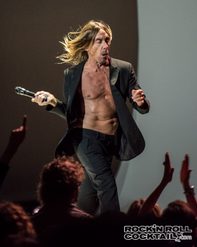 Iggy Pop photographed by Jason Miller-5