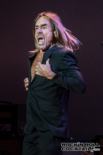 Iggy Pop photographed by Jason Miller